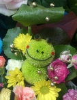 岡山県 倉敷市のキャバクラのClub夢蘭瑠樹 〜ムーランルージュ〜に在籍の美咲