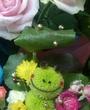 倉敷にあるキャバクラのClub夢蘭瑠樹 〜ムーランルージュ〜に在籍の美咲のページへ