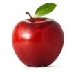 EVA&APPLE -イブ アンド アップル- れ な🍎のページへ