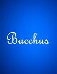 広島県 福山・三原のキャバクラのBacchus-バッカス-に在籍のゆづき
