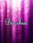 広島県 福山・三原のキャバクラのBacchus-バッカス-に在籍のえり